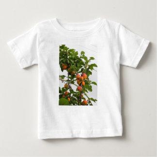Camiseta Para Bebê Abricós maduros que penduram na árvore. Toscânia,