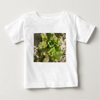 Camiseta Para Bebê Alface fresca que cresce no campo. Toscânia,