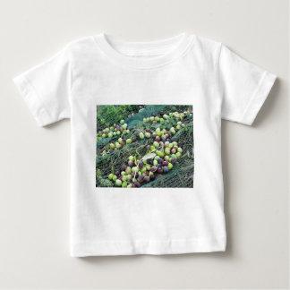 Camiseta Para Bebê Apenas azeitonas escolhidas na rede durante o