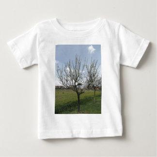 Camiseta Para Bebê Árvore de pera de florescência no jardim Toscânia,