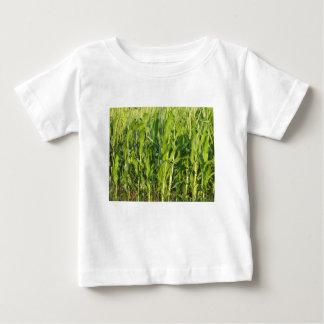 Camiseta Para Bebê As plantas de milho verde estão crescendo no verão