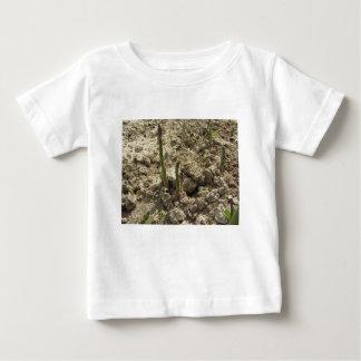 Camiseta Para Bebê Aspargo verde novo que sprouting da terra