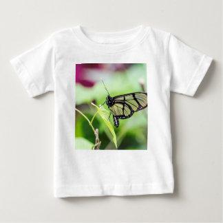 Camiseta Para Bebê Borboleta de vidro da asa