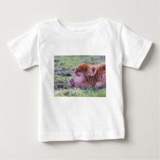 Camiseta Para Bebê Cabeça da vitela escocesa recém-nascida marrom do
