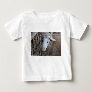 Camiseta Para Bebê Carneiros com feno