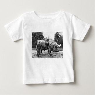 Camiseta Para Bebê Cavaleiro do porco