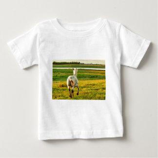 Camiseta Para Bebê Cavalo norte do título