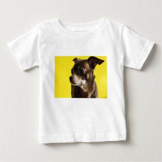 Camiseta Para Bebê chihuahua