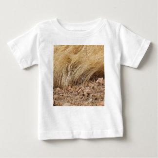 Camiseta Para Bebê Detalhe de um campo do teff durante a colheita