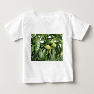 Camiseta Para Bebê Dois pêssegos verdes unripe que penduram em uma