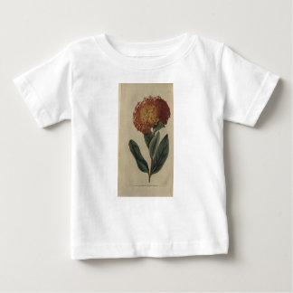 Camiseta Para Bebê Escarlate de Ixora