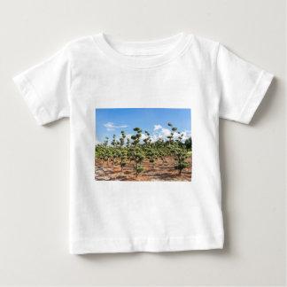 Camiseta Para Bebê Formas bonitas do topiary nas coníferas