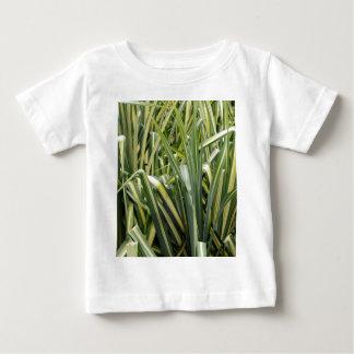 Camiseta Para Bebê Grama Variegated do carriço