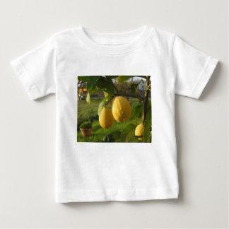 Camiseta Para Bebê Limões amarelos que crescem na árvore no por do