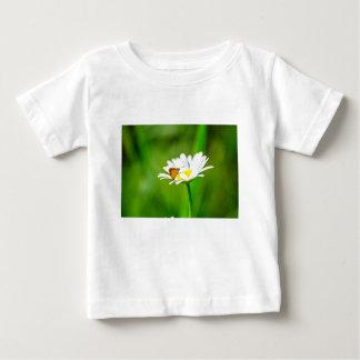 Camiseta Para Bebê MK2A8183_v01