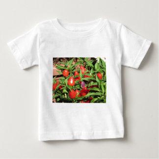 Camiseta Para Bebê Pimentas de pimentão vermelho que penduram na