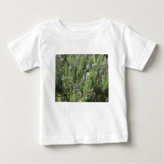 Camiseta Para Bebê Planta de Rosemary com flores. Toscânia, Italia