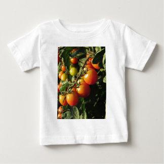 Camiseta Para Bebê Plantas de tomate que crescem no jardim. Toscânia
