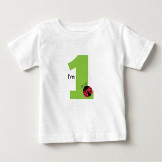 Camiseta Para Bebê Primeiro aniversário, eu sou um, joaninha bonito