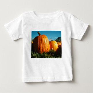 Camiseta Para Bebê Pumpkins_Hancock_Shaker_village_2418