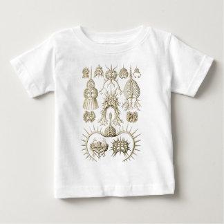 Camiseta Para Bebê Radiolarians