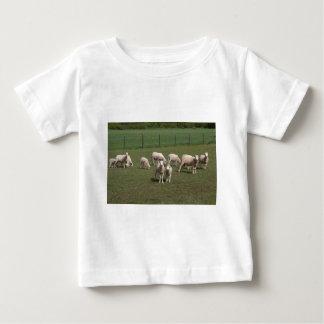 Camiseta Para Bebê Rebanho dos carneiros