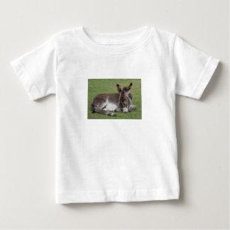 Camiseta Para Bebê Sono bonito do asno do bebê