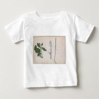 Camiseta Para Bebê Uma planta de rabanete, uma semente, e uma flor