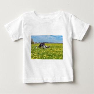 Camiseta Para Bebê Vaca com as vitelas que pastam no prado com