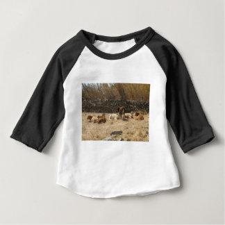 Camiseta Para Bebê Vacas