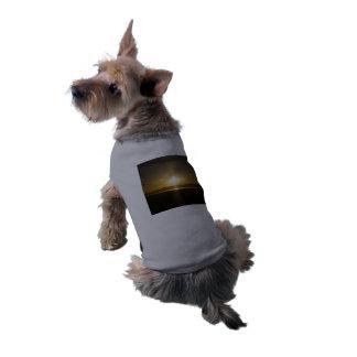 Camiseta Para o animal de estimação