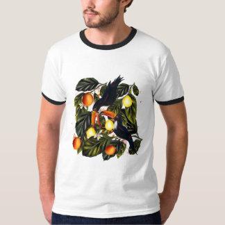 Camiseta Paraíso tropical. Toucans e citrino
