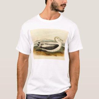 Camiseta Pássaro atado Short do albatroz do vintage
