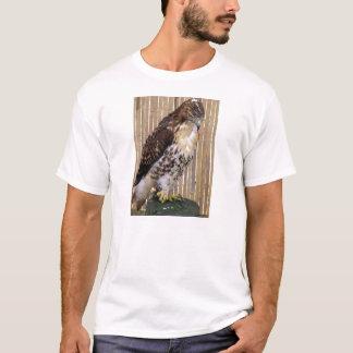 Camiseta Pássaros selvagens: Falcão Vermelho-Atado