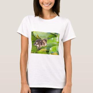 Camiseta Patinho de Brown que anda nas folhas do lírio de