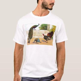 Camiseta Pavão, Turquia, & galinha-do-mato