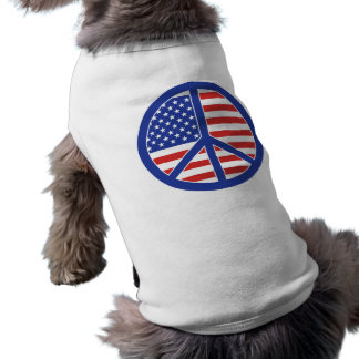 Camiseta Paz em América