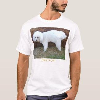 Camiseta Paz em você