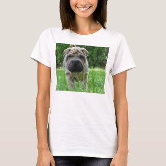 Camiseta pei shar 2