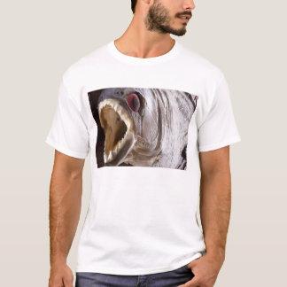 Camiseta Peixes do Piranha como o troféu na madeira se