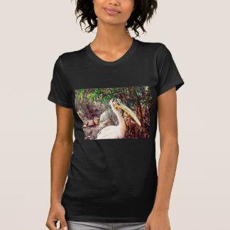Camiseta pelicanos
