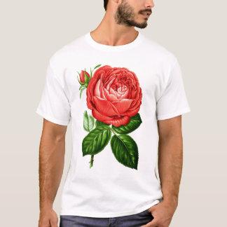 Camiseta Perpétuo híbrido vermelho do vintage, Paul Neyron