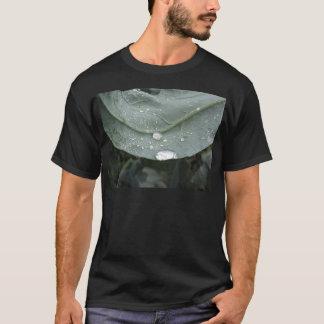 Camiseta Pingos de chuva nas folhas da couve-flor