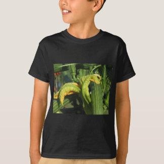 Camiseta Planta do abobrinha na flor no jardim vegetal