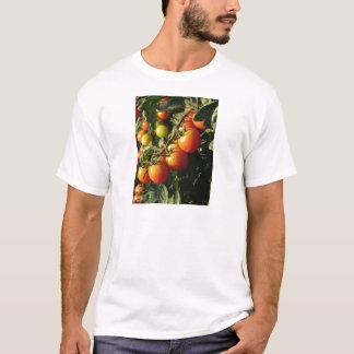 Camiseta Plantas de tomate que crescem no jardim. Toscânia