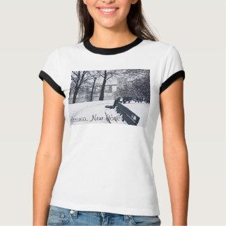 Camiseta Ponte de Hellgate, Astoria, t-shirt de NY