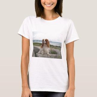 Camiseta Ponte descuidado Michigan de Blenheim Mackinaw