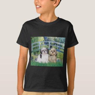 Camiseta Ponte - Shih Tzu (dois - A+Y)
