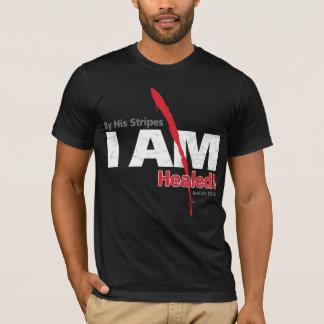 Camiseta Por suas listras EU sou curado