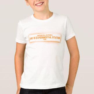 Camiseta Positronics central norte